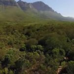 Experience Somerset West Through the Eyes of the Locals